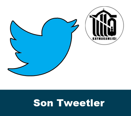 Son Tweetler